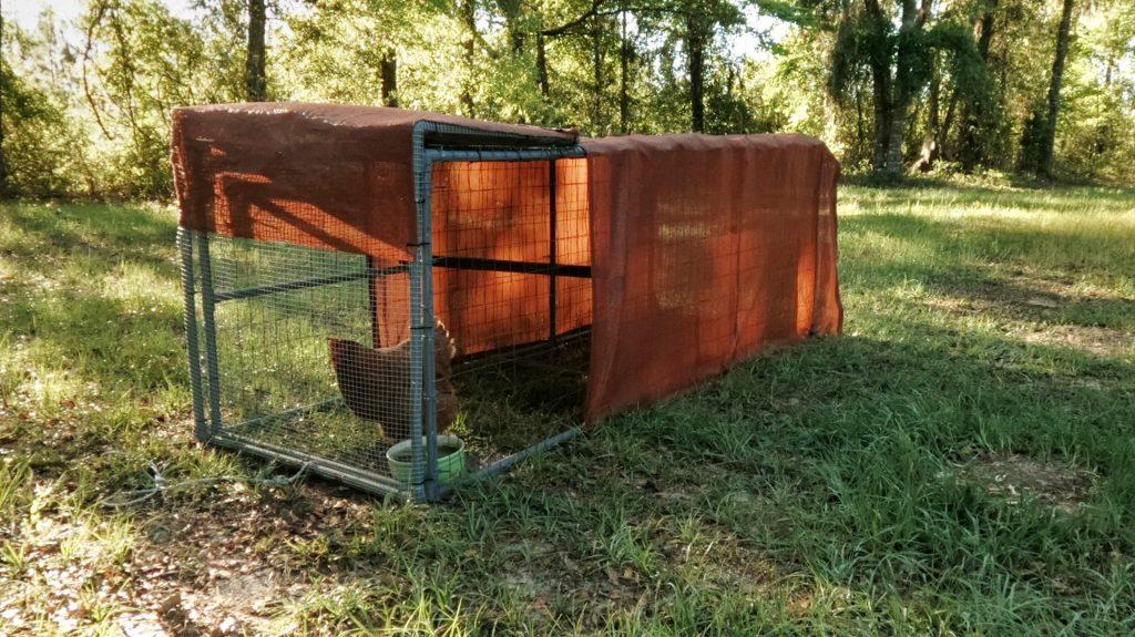 PVC Chicken Coop