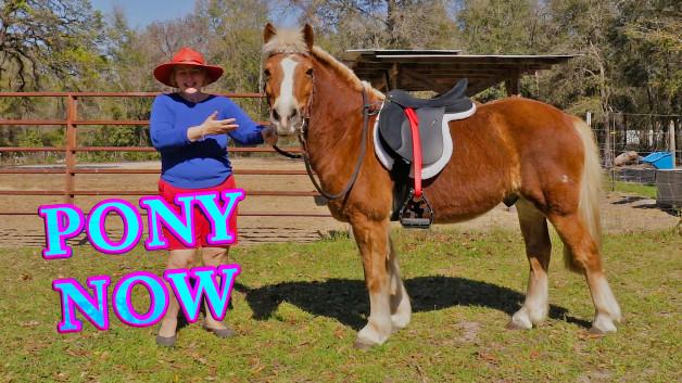 Pony Now